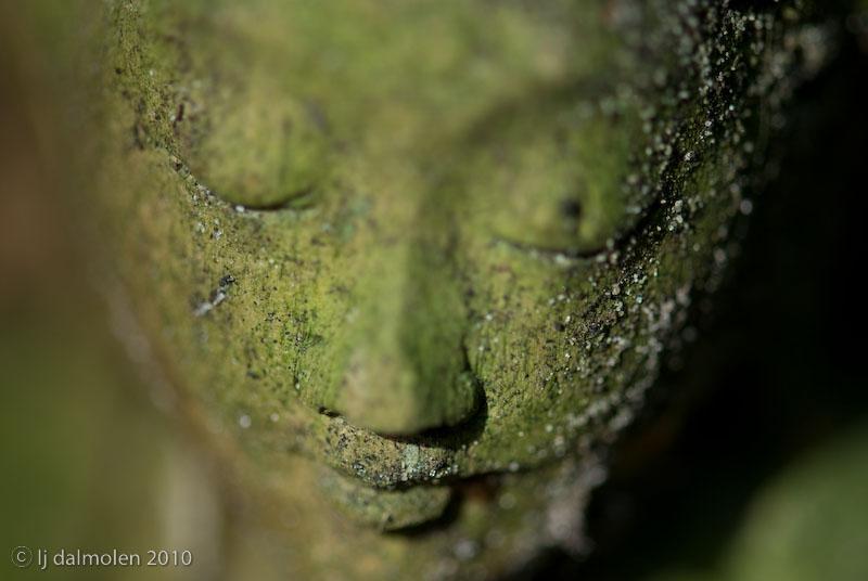 Meditatie – laat het met rust –